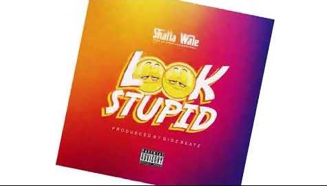 Shatta Wale - Look Stupid